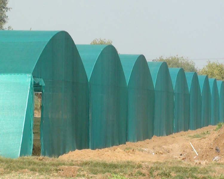 100% New HDPE Shade Net with UV(SDN03)