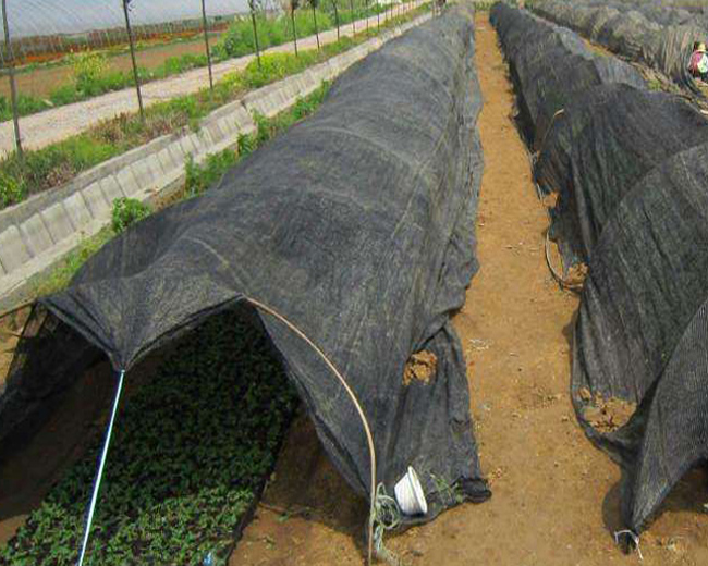 100% New HDPE Shade Net with UV(SDN05)